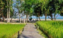 Thara Patong Beach Resort & Spa is located at 170